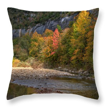 Throw Pillow featuring the photograph Sweetgums At Steel Creek  by Michael Dougherty