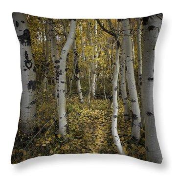 Sweetheart Trail Throw Pillow