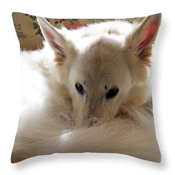Sweetie Pie Throw Pillow