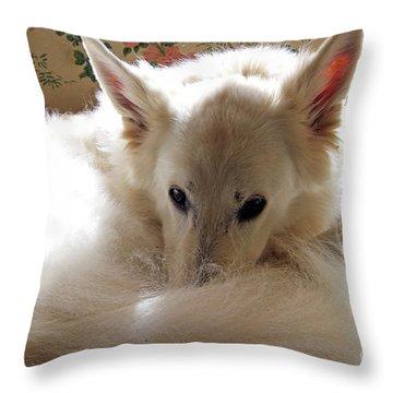 Sweetie Pie Throw Pillow