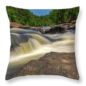 Sweetwater Creek Long Exposure 2 Throw Pillow