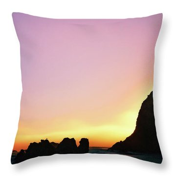 Throw Pillow featuring the photograph Swept Away Beach Image Art by Jo Ann Tomaselli