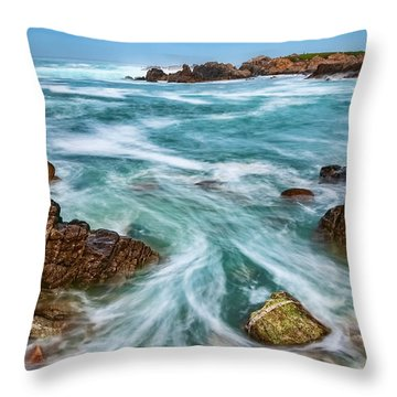 Throw Pillow featuring the photograph Swept Away by Dan McGeorge