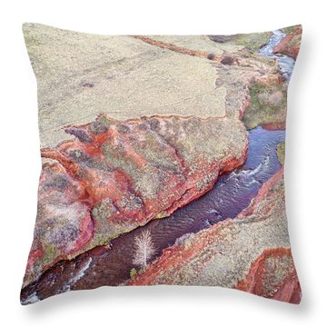 swift creek at  Colorado foothills - aerial view Throw Pillow