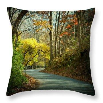 Swift Shoal Road Throw Pillow by Joyce Kimble Smith