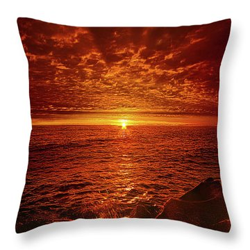 Throw Pillow featuring the photograph Swiftly Flow The Days by Phil Koch
