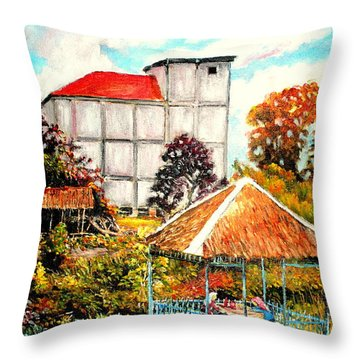 Swifts  Nest's Building Throw Pillow