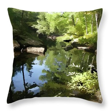 Swimmin' Hole Throw Pillow by Betsy Zimmerli