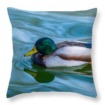 Swimming Duck Throw Pillow