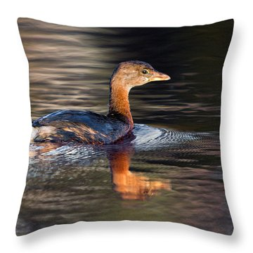 Swimming Grebe Throw Pillow by Timothy McIntyre