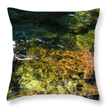 swimming in the Buley Rockhole waterfalls Throw Pillow