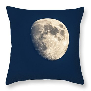 Swimming In The Deep Blue  Throw Pillow