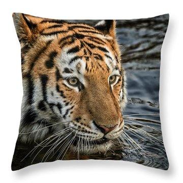 Swimming Tiger Throw Pillow