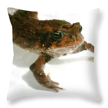 Swimming Toad Throw Pillow