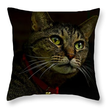 Throw Pillow featuring the photograph Swinger by Laura Ragland