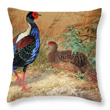 Swinhoe's Pheasant  Throw Pillow by Joseph Wolf