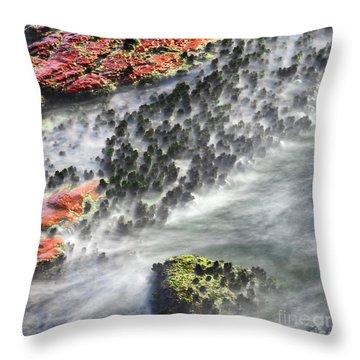 Swirl 2 Throw Pillow