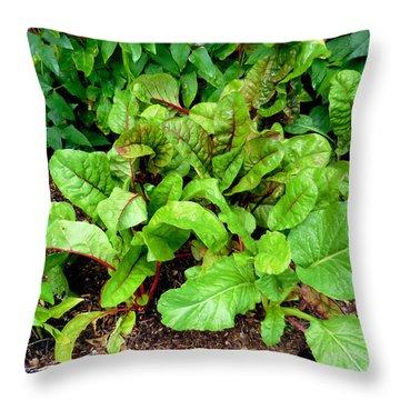 Swiss Chard In A Vegetable Garden 2 Throw Pillow