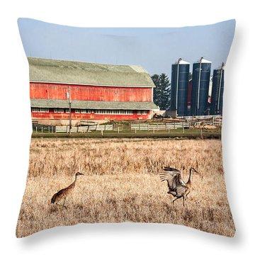 Swiss Cranes Throw Pillow
