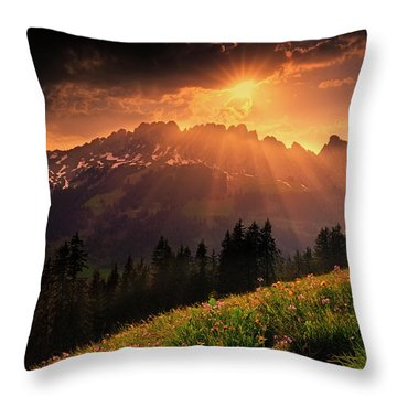 Swiss Teeths Throw Pillow