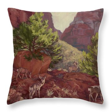 Switchback Stop For Wildlife Throw Pillow