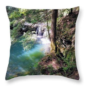 Sycamore Falls Throw Pillow