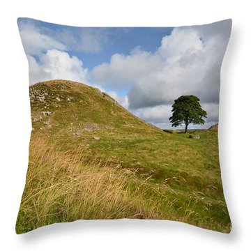 Northumberland Throw Pillows