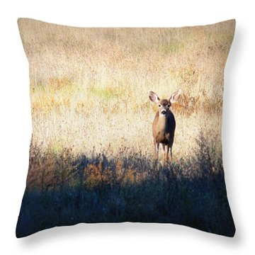 Sycamore Grove Series 2 Throw Pillow by Carol Groenen