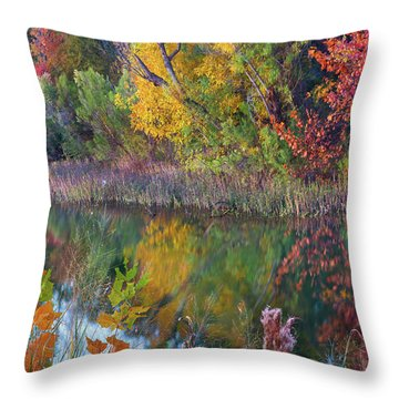 Sycamores And Willows Throw Pillow by Tim Fitzharris