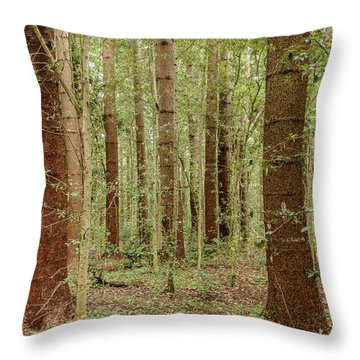 Throw Pillow featuring the photograph Sylvan Beauty by Werner Padarin