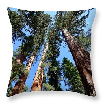 Sylvan Giants 2 Throw Pillow