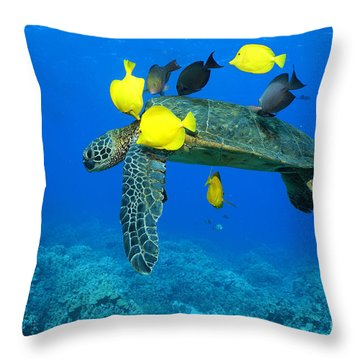 Symbiosis Throw Pillow by Aaron Whittemore