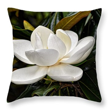 Symbol Of A Southern Summer Throw Pillow