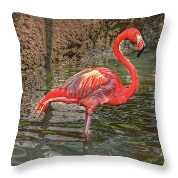 Throw Pillow featuring the photograph Symbol Of Florida by Hanny Heim