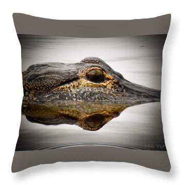 Symmetry And Reflection Throw Pillow