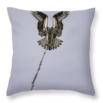 Symmetry Throw Pillow