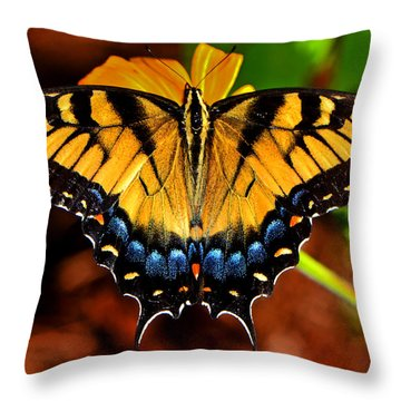 Symmetry Of A Butterfly 004 Throw Pillow
