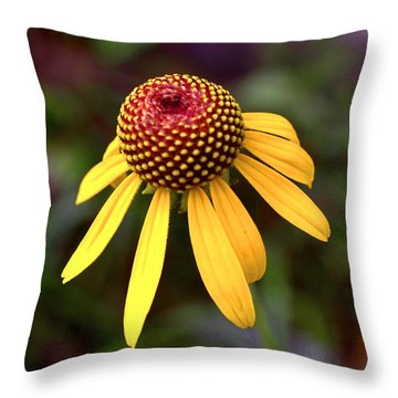 Symmetry Of Nature 015 Throw Pillow by George Bostian
