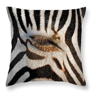 Synthetic Zebra Throw Pillow