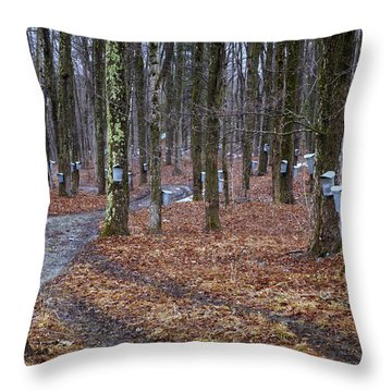 Throw Pillow featuring the photograph Syrup Buckets by Tom Singleton