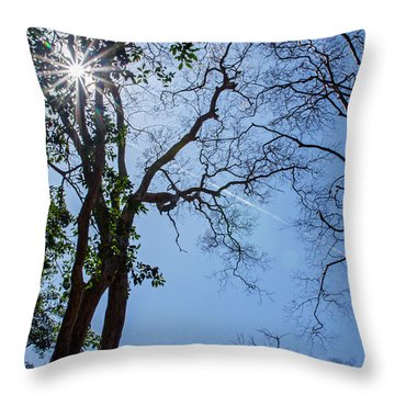 Ta Kou Forest Throw Pillow
