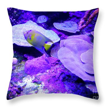 Throw Pillow featuring the photograph Ta Purple Coral And Fish by Francesca Mackenney
