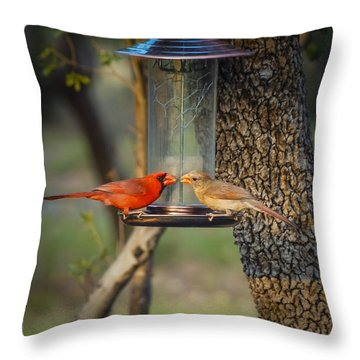 Throw Pillow featuring the photograph Table For Two by Debbie Karnes