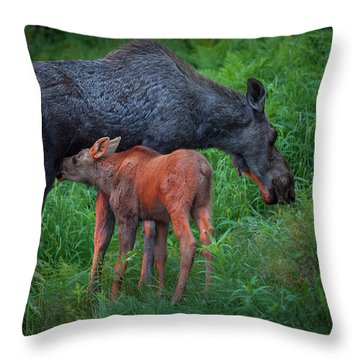Throw Pillow featuring the photograph Table For Two by Tim Newton
