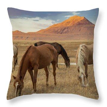 Table Mountain Sunrise Throw Pillow