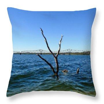 Table Rock Lake Kimberling City Throw Pillow