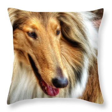 Taffy Collie Throw Pillow