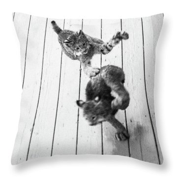 Throw Pillow featuring the photograph Tag Youre It by Tim Newton