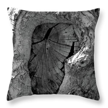 Throw Pillow featuring the photograph Tahoe Abstract Bark by LeeAnn McLaneGoetz McLaneGoetzStudioLLCcom