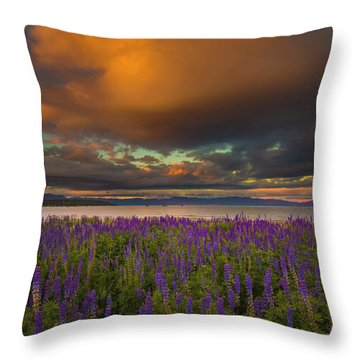 Tahoe City Lupine Sunset Throw Pillow